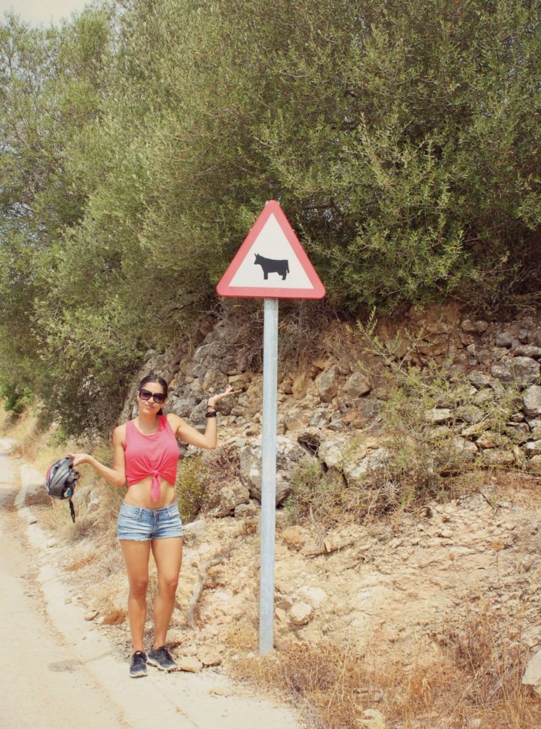 Photo of cow crossing sign on Ibiza countryside bike tour
