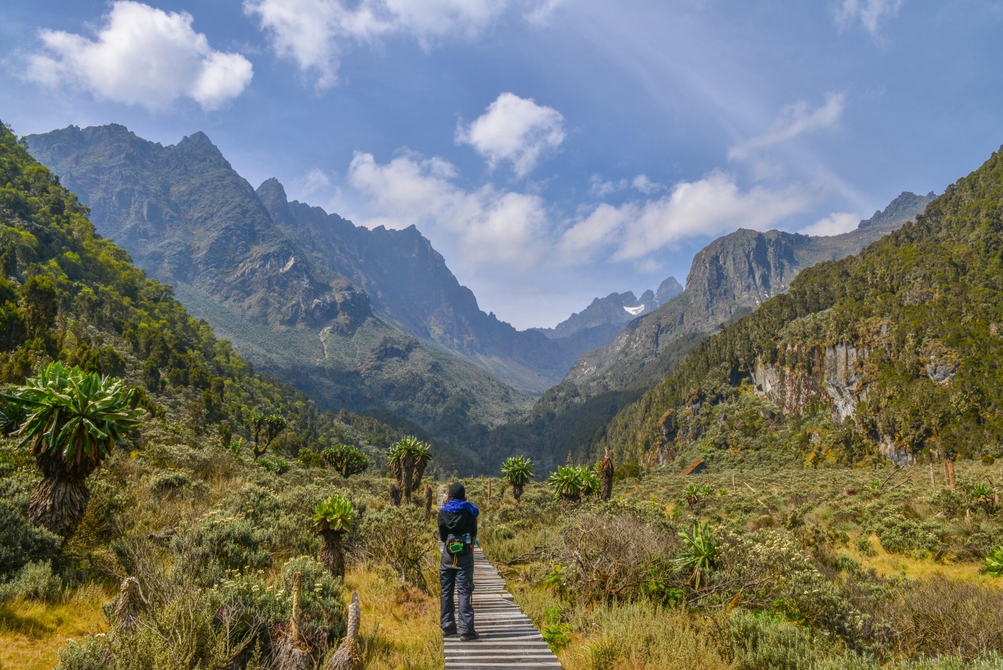 Top Things To Do In Uganda - HIKE THE RWENZORI MOUNTAINS