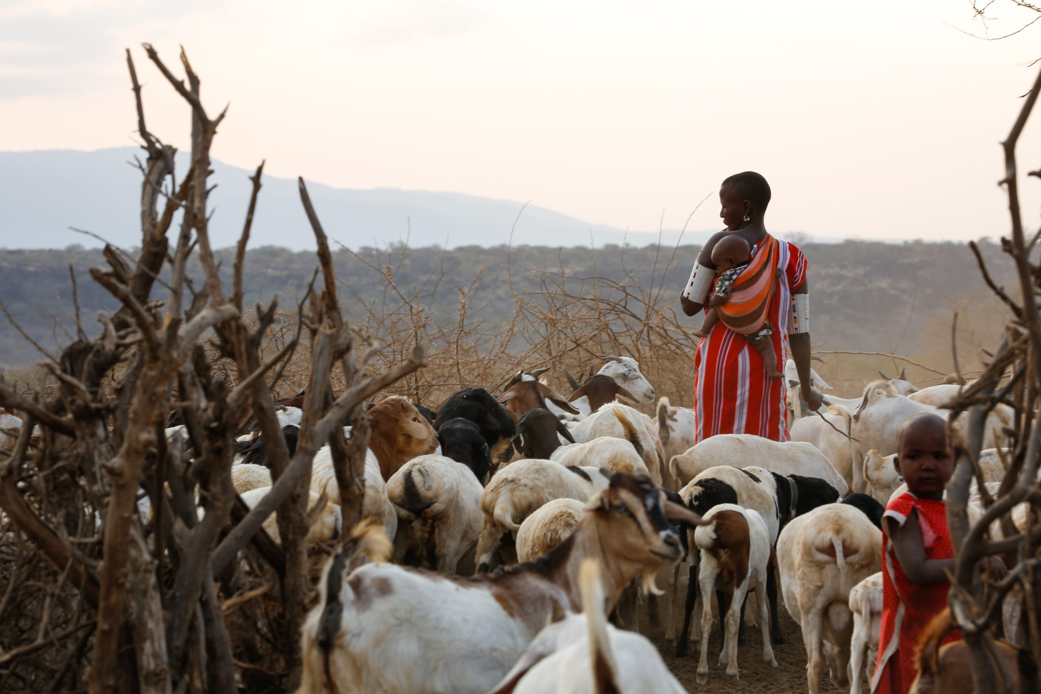 Maasai woman with baby herding goats - Mar Gone Wild
