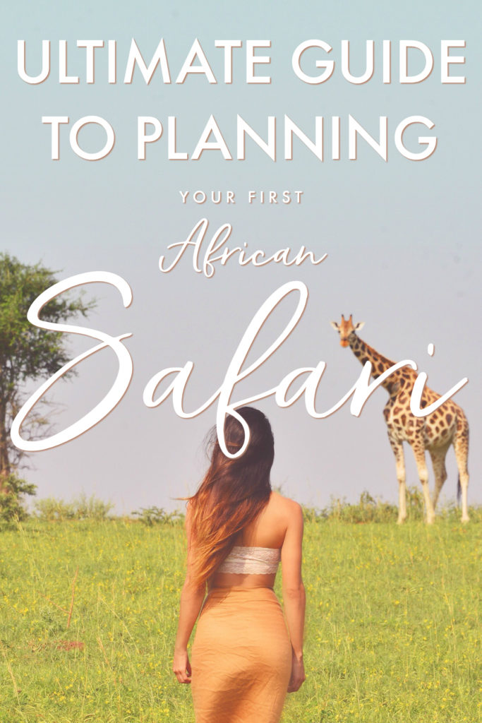 How To Plan An African Safari