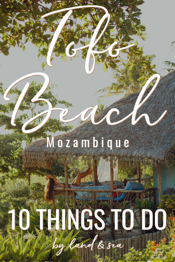 10 Things To Do In Tofo Beach Mozambique
