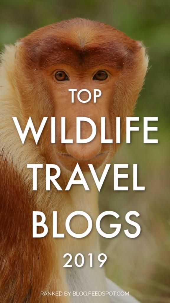Top Wildlife Travel Blogs 2019 - Mar Gone Wild