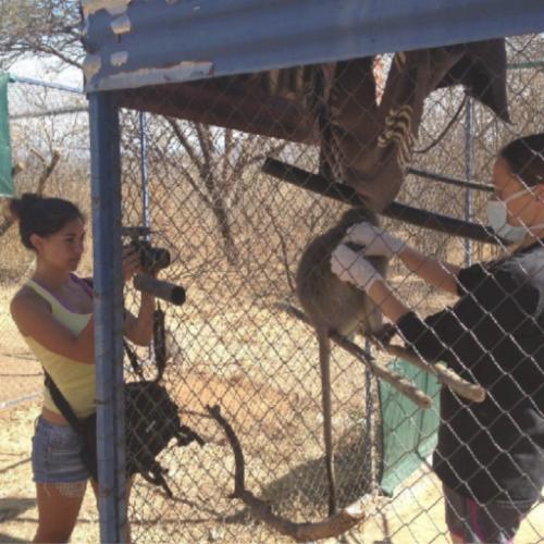 Marlina Moreno_Filming at Vervet Monkey Foundation South Africa