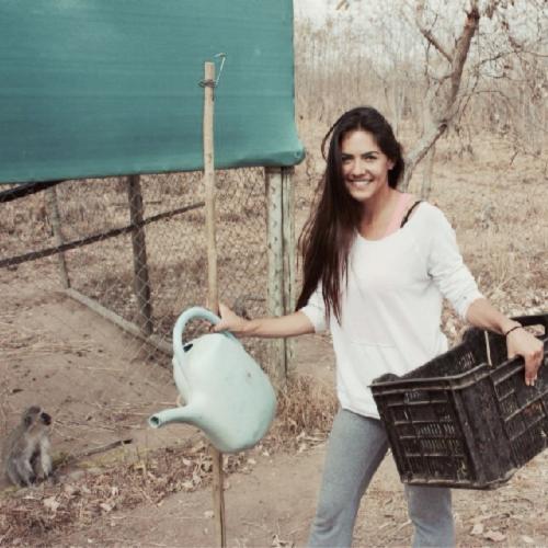 Marlina Moreno_Vervet Monkey Foundation South Africa